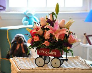 Baby Girl Wagon Upper Darby Polites Florist, Springfield Polites Florist