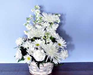 Beautiful Blessings Upper Darby Polites Florist, Springfield Polites Florist