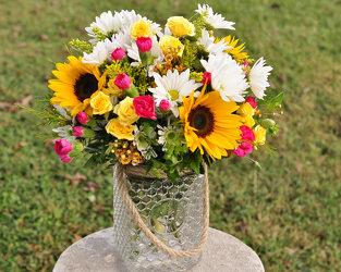 Country Life Upper Darby Polites Florist, Springfield Polites Florist