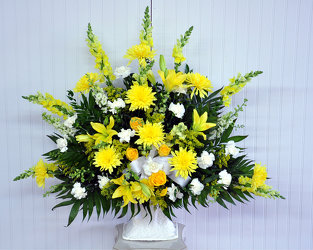 Funeral Basket-Yellow and White Upper Darby Polites Florist, Springfield Polites Florist