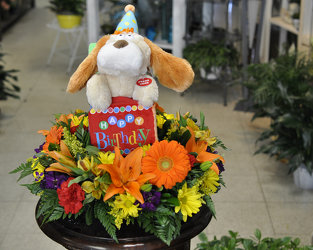 It's Your Birthday Upper Darby Polites Florist, Springfield Polites Florist