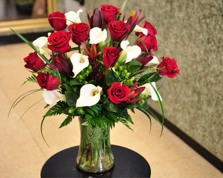 Red Roses and Cala Lilies Upper Darby Polites Florist, Springfield Polites Florist