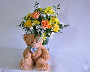 The Beary Thought of You Upper Darby Polites Florist, Springfield Polites Florist