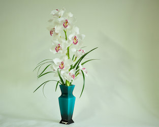 White Orchid Spray Upper Darby Polites Florist, Springfield Polites Florist